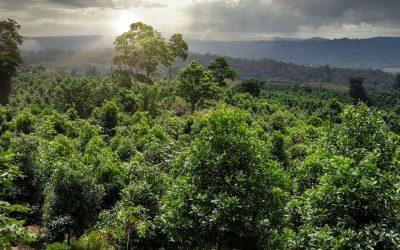 Filmtipp: ARTE Doku – Costa Rica